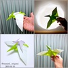 折り紙×恐竜はやはり鉄板! 〜電子書籍「パーフェクトオリガミライフ」の「プテラノドン」を折ってみました〜