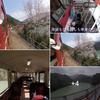 美しい日本『大井川鉄道』お薦めの旅路です ❣