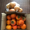 2017.12.03(Sun.)柿と梨がたくさん