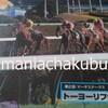 サラブレッドカード95 062 第2回マーチステークス トーヨーリファール