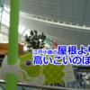羽田空港観察記 ~May 2019 (こいのぼり)~