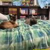本日の備忘録/Video shows the moment two cats felt the Japan earthquake