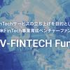 フィンテック新規事業の早期実現を遂行する「SV-FINTECH」とは