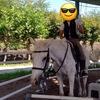 乗馬体験してきました!!【クレイン倉敷】