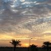 帯同生活92日目〜Dubai Duty Free Tennis Championships〜