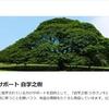 中国語学習サポート「自学之樹」