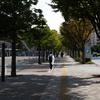 東京都現代美術館前