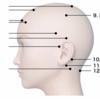 『脳天直撃セガサターン(物理)』がヘッドスパ界ではあながち大袈裟でもないというお話