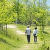 3月25日は「散歩にゴーの日」~骨折予防の優れもの~