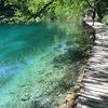 【Croatia旅2017⑧】Nacionalni park Plitvička jezera (プリトヴィツェ湖群国立公園)~美しい場所が次々に現れる下湖群~