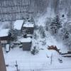 真冬の北海道    さっぽろ雪まつりの旅   後編