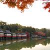 庭園15 長岡天満宮 八条ヶ池と錦景苑