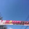 お方さま・再起動!(リブート) 番外編 「さが桜マラソンへの思い」