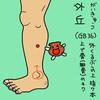 胆経(GB)36 外丘(がいきゅう)