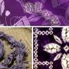 ムラサキ(紫草) 額田王&大海人皇子の歌でよく知られていますが,花は地味.でも根の役割は多彩.採られる色素は日本三大色素の一つと言われることも.乾燥して生薬「紫根」に.しかし現在は絶滅危惧種 紫草(むらさき) / 万葉集 あかねさす,むらさきのいき,しめのいき,のもりはみずや,きみがそでふる 額田王(こまやかな情緒に伴う媚態をも感じうる 茂吉) むらさきの,にほへるいもをにくくあらば,ひとづまゆゑに,われこひめやも 大海人皇子(複雑な御心持を,直接に力強く現し得た傑作.茂吉)