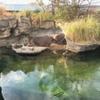 双極性障害と天王寺動物園