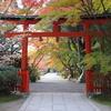 京都 紅葉100シリーズ社寺 大原野神社