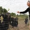 チンパンジーも違法取引の対象に グドール博士が訴えるその現状とメッセージ