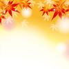 秋の虫の音でスピリチュアルを感じる理由