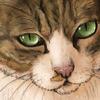 【イラスト】猫:くーたろ【似顔絵】
