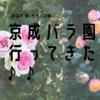 京成バラ園に秋薔薇を見に行ってきた!アクセスや見頃などの情報まとめ