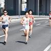 【第41回神奈川マラソン】(10km/ハーフ)試合結果