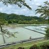 青山沈殿池(神奈川県相模原)