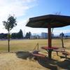 【犬連れで行きたい松本市内の公園】おススメ6選☆彡