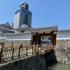 静岡浅間神社~駿府城公園ウォーキング