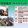 育成馬ブログ 生産編⑥(その1)