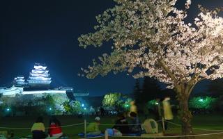 【姫路小旅行2】姫路城夜桜会とホテルモントレ姫路宿泊。