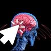 就活という名の洗脳?