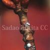 冬の森、ぜフィルス(ミドリシジミ族)の越冬卵を求めて Ⅱ