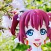 桜の写真も今年はシーズンオフかな。季節感のある写真は継続していきます!なお話です