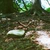 坂と桃の木