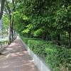 二子玉川が気になる。穏やかに過ごすのが現状吉 |10月5日世田谷区と川崎市が同時に花火大会を開催