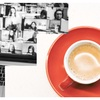 Curator Coffee Chat: Let's Talk About The Basics