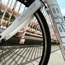 MOMO_Cycle