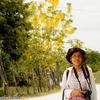 ベリーズ 背景は山吹色の花
