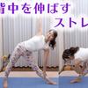 背中を伸ばすヨガストレッチ  Back pain relief stretch1日1分背中・腰の疲れをほぐす(三角形のポーズ・ウエストねじり)
