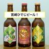ビール備忘録 その44 ~宮崎ひでじビール、〇〇〇を使った逸品!~