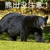 鳥取砂丘にまでクマが出た・・・今年も熊の出没・遭遇を覚悟して山歩き