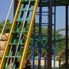 真夏の公園 熱中症対策の失敗と外遊びの効果