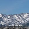 青空と、冬景色と、にゃんこ達
