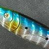 釣り初心者に「優しい1本」|コンパクトロッドは見た目が可愛いおさかな型