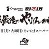 【試合結果】12月31日(大晦日)開催|RIZIN(ライジン)「平成最後のやれんのか」まとめページ