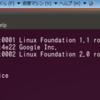 VirtualBox 4.1.2 + ubuntu11.04 で Nexus S が認識できないのはVirtualBox側のBugみたい