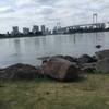 【ポケモンGoの進捗】お台場海浜公園を23km歩いた