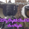 【動画アップ】サブチャンネルNatural Feeling Music『小さな滝』とクリスタルボウルの響きを 新潟五泉市慈光寺へ