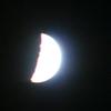 2020年12月26日までに撮影したデジカメ写真。モノクロは影を撮ります